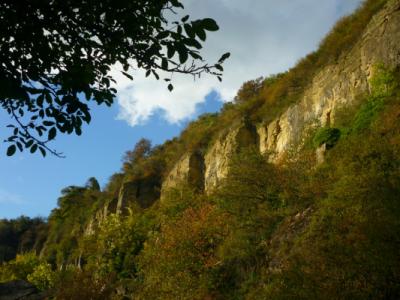Jörg Kaspari - Landschaftsarchitekt - Naturparadies Nitteler Felsenpfad
