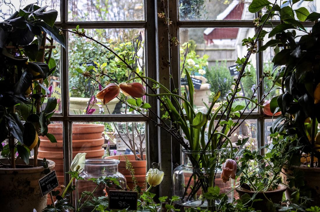 Therése Stoltz - Sofiero Flowers & Garden boutique