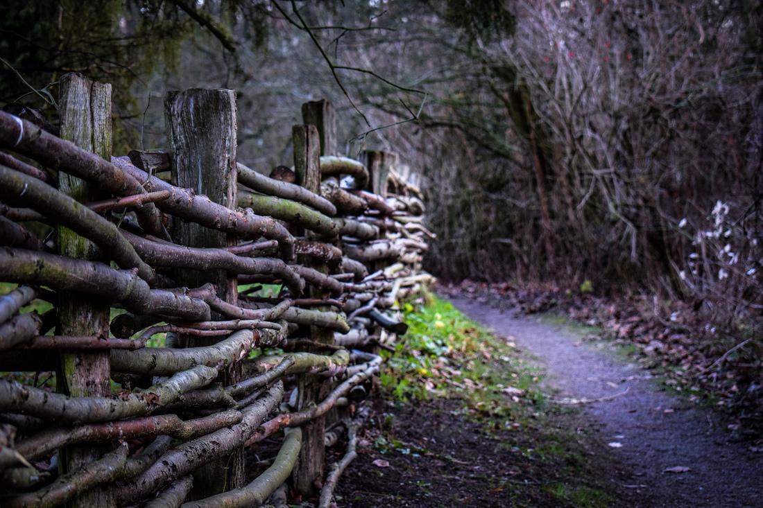 Therése Stoltz - A Fairytale Walk