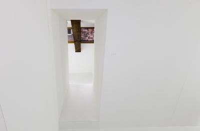 Kunstkollektiv CKÖ
