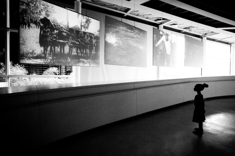 Shawn Liu Studio - Award