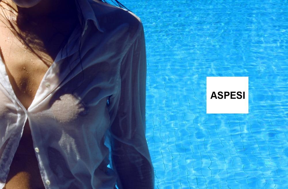 Ariadna Nistal de luna - ASPESI