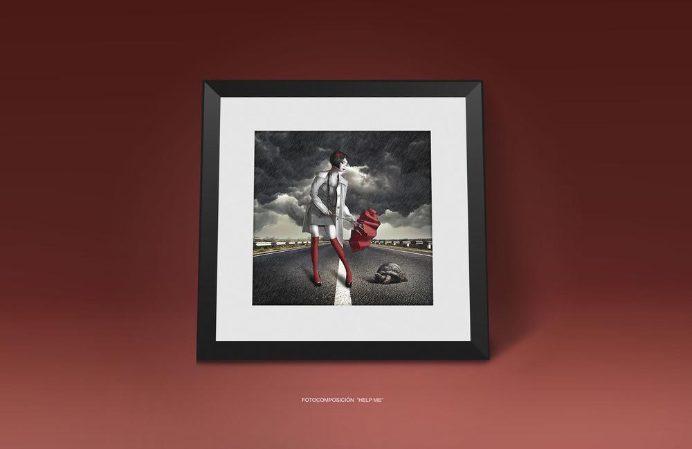 Miguel  Andresen - FINE ART