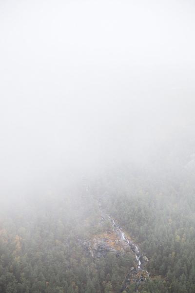 norwegian mist