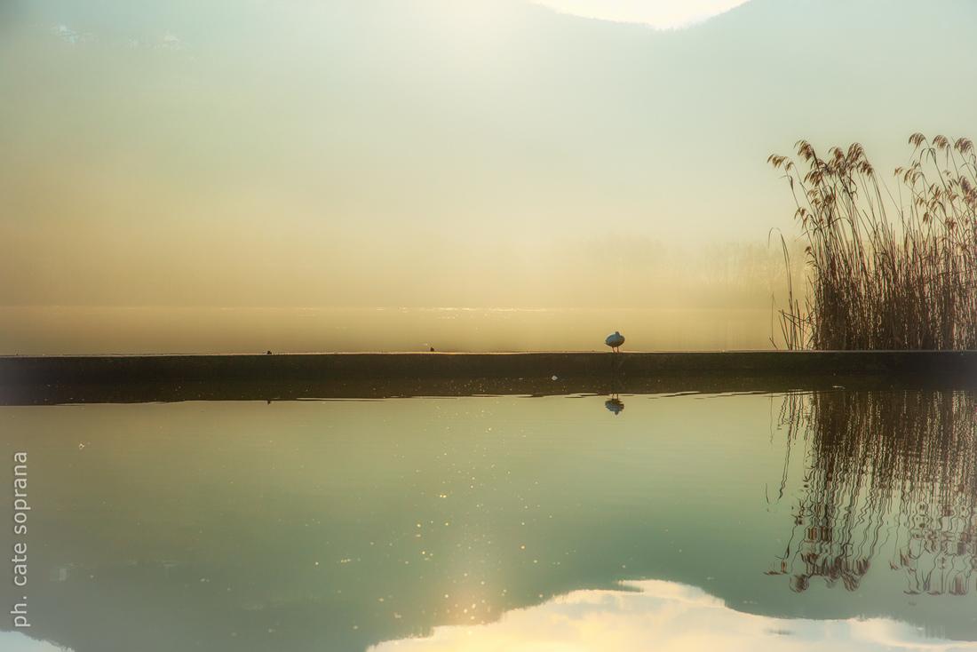 Cate Soprana - La luce sul lago
