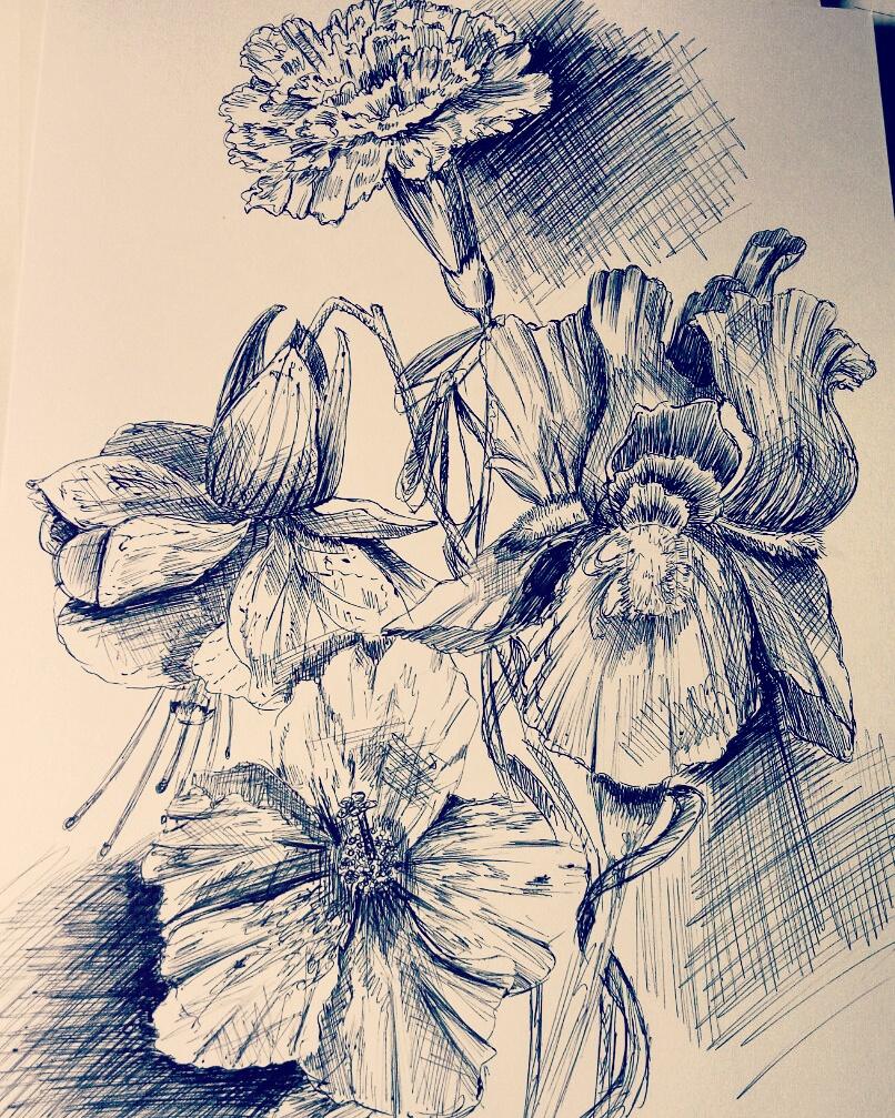 Weronika Abramczyk - Daily Sketch