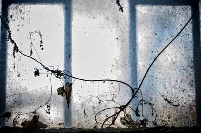 Dariusz Parol is a photographers in Poland