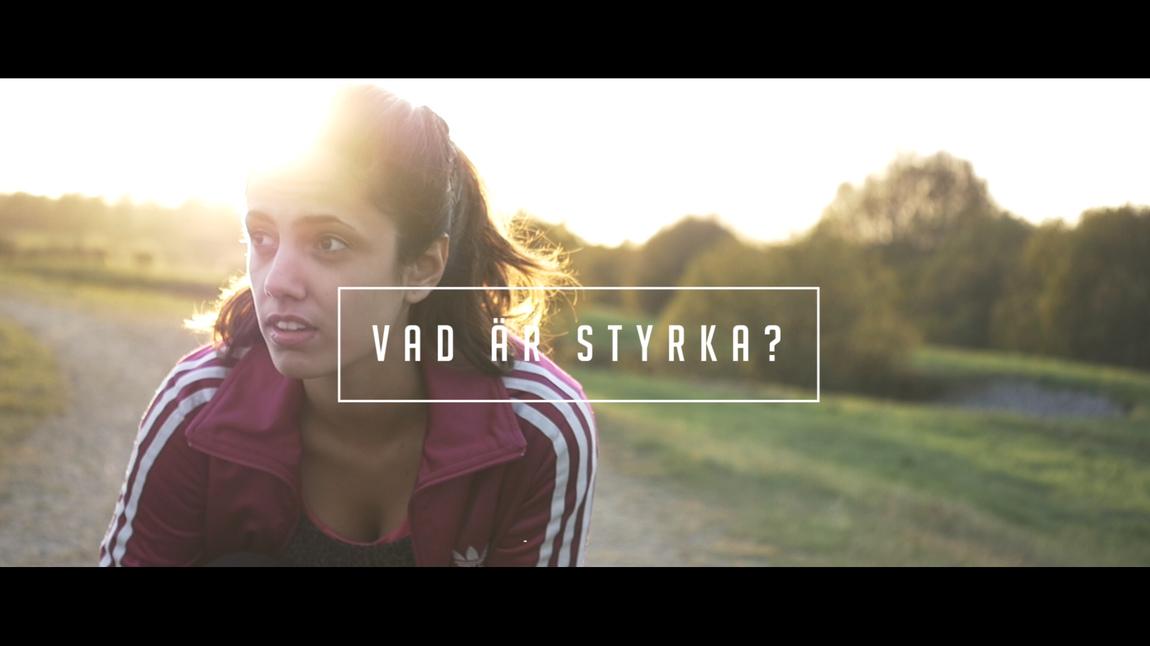 Mattias Larsson - Vad är styrka?