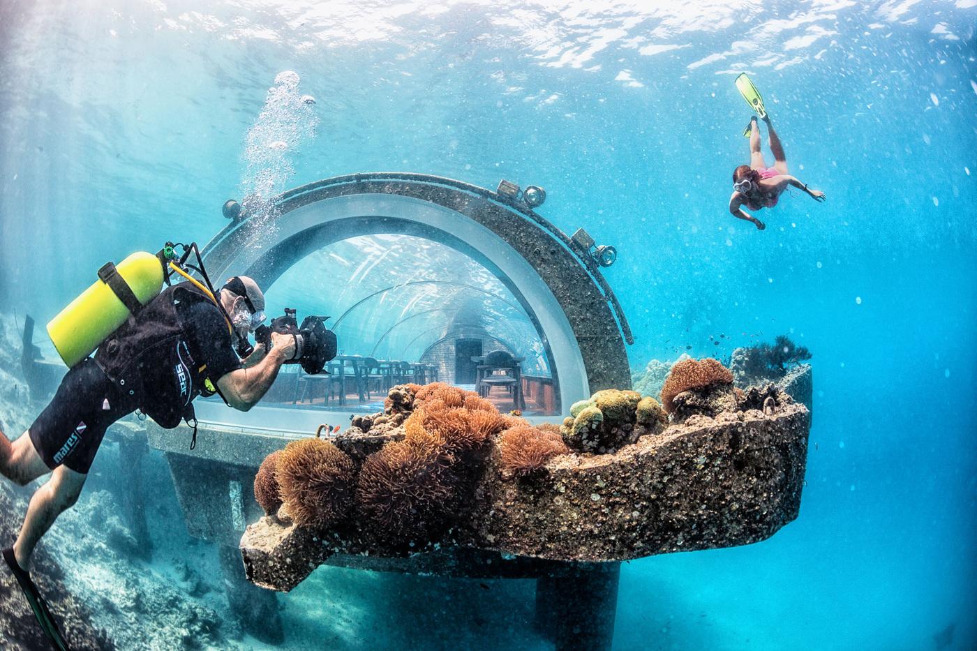 Jesper Anhede - Underwater photography