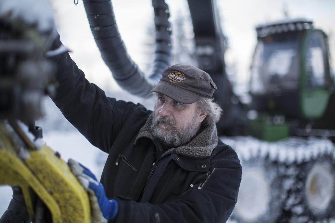 Sverker Johansson - Skogen