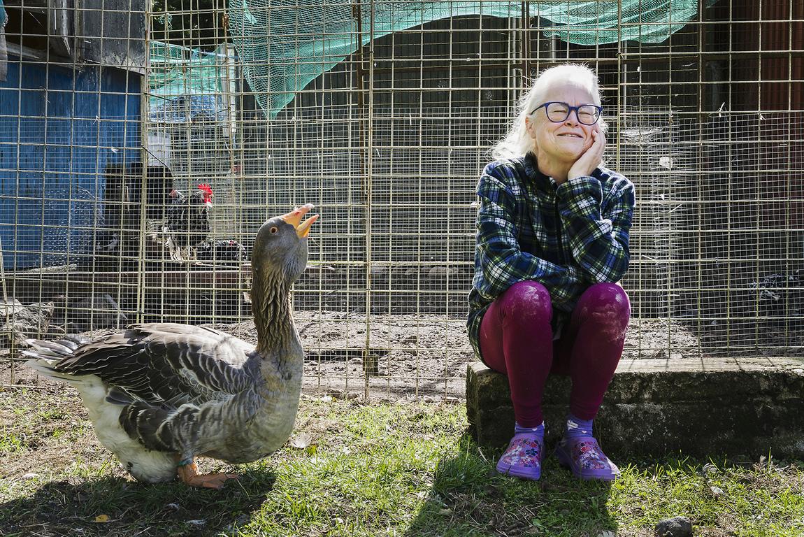 Kristina Wirén - AnnaCarin Lever ensam med sina djur i skogen