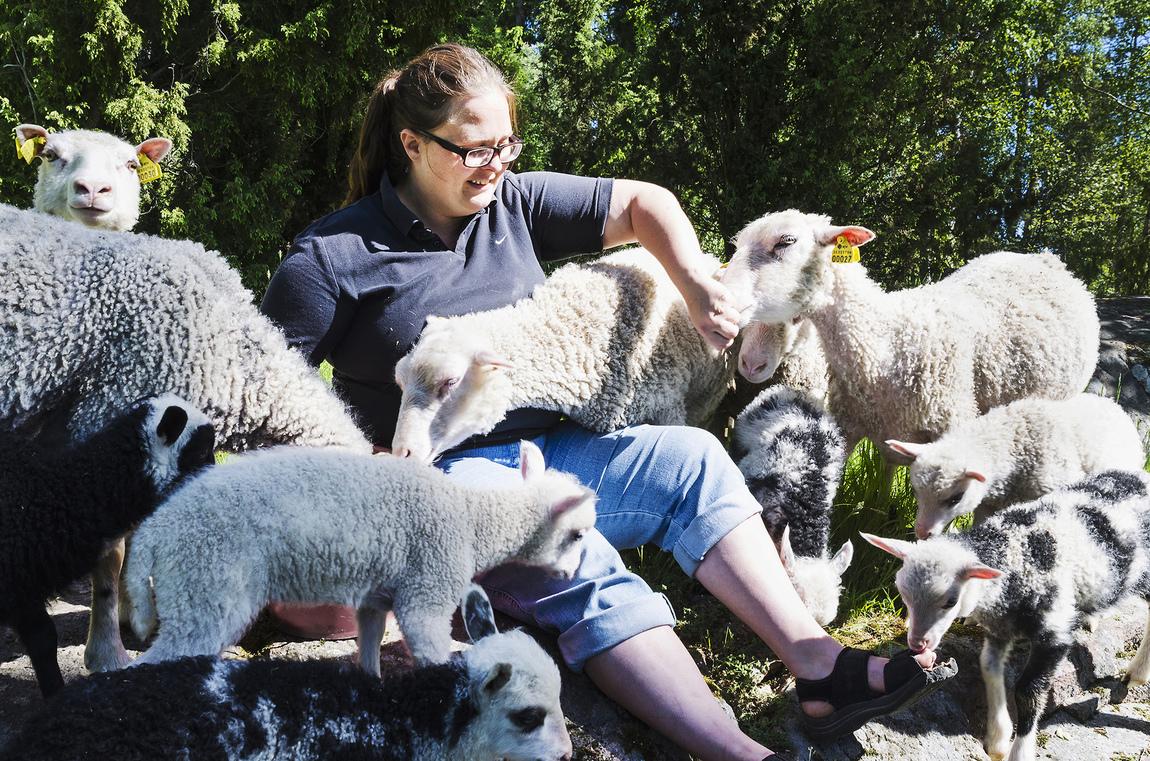 Kristina Wirén - Nymålen - att läka själen i kontakten med djur
