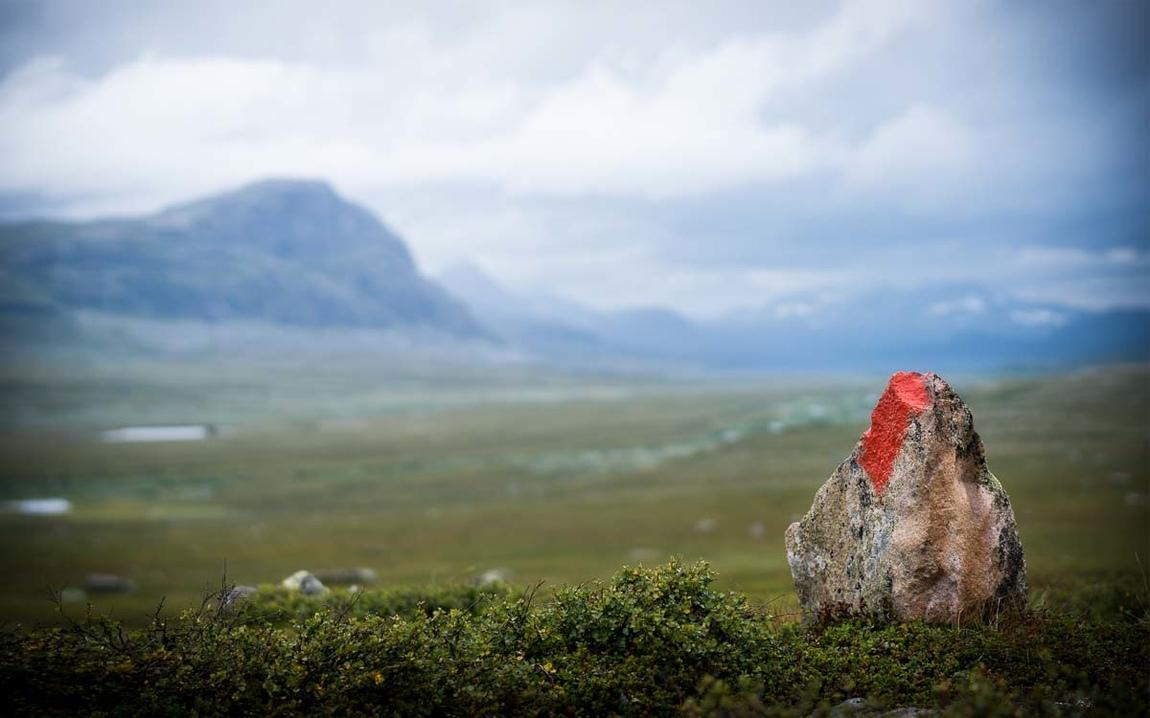 Håkan Larsson - Landscape