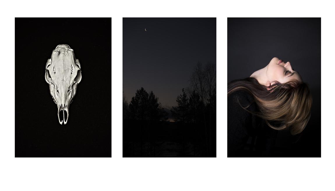 Anneli Larsson - Blandade bilder