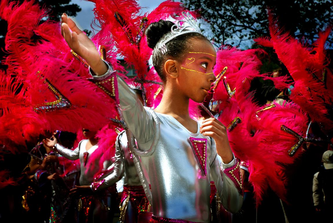 Mehrdad Modiri - Hammarkulle Carnival