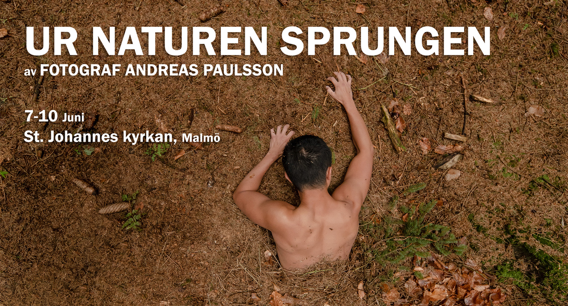Andreas Paulsson - Exhibitions