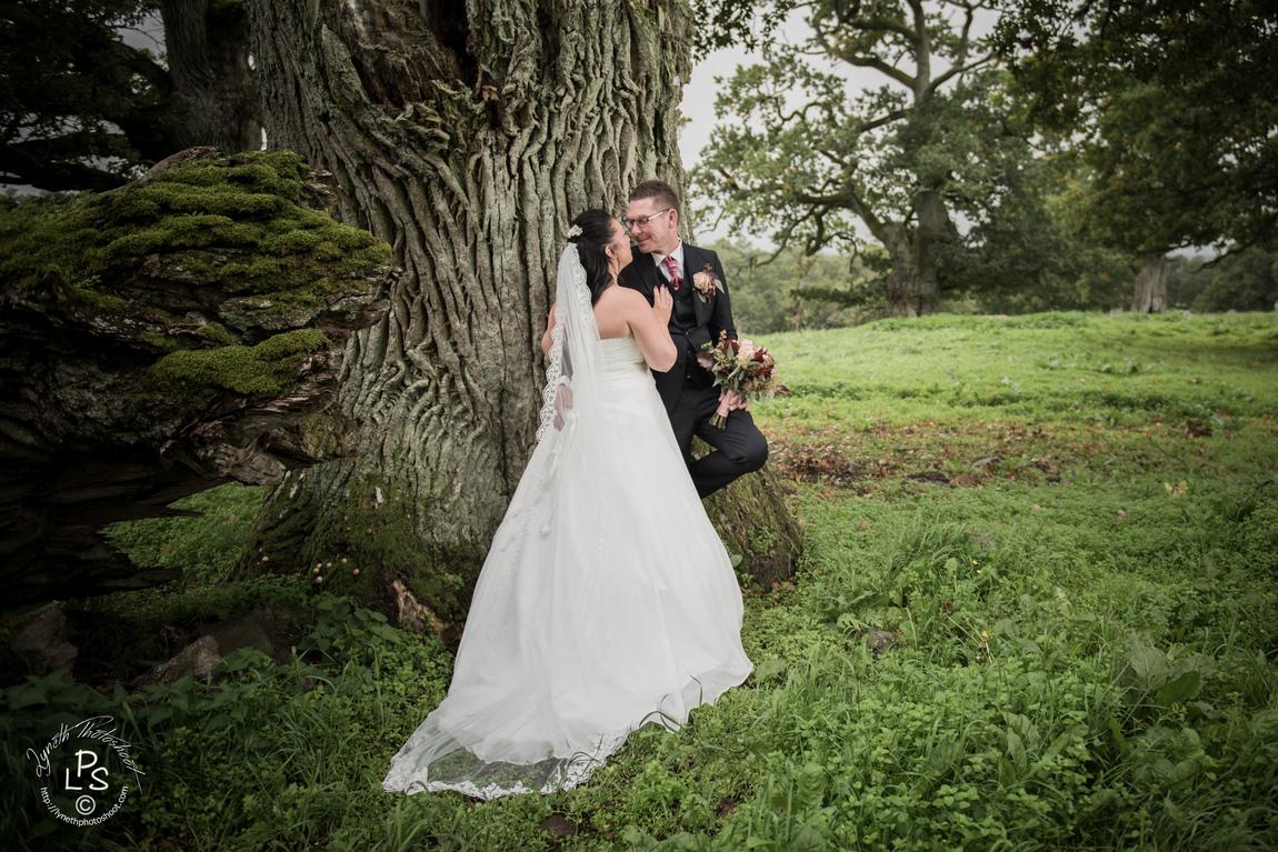 Lilynette Wennlid - Weddings