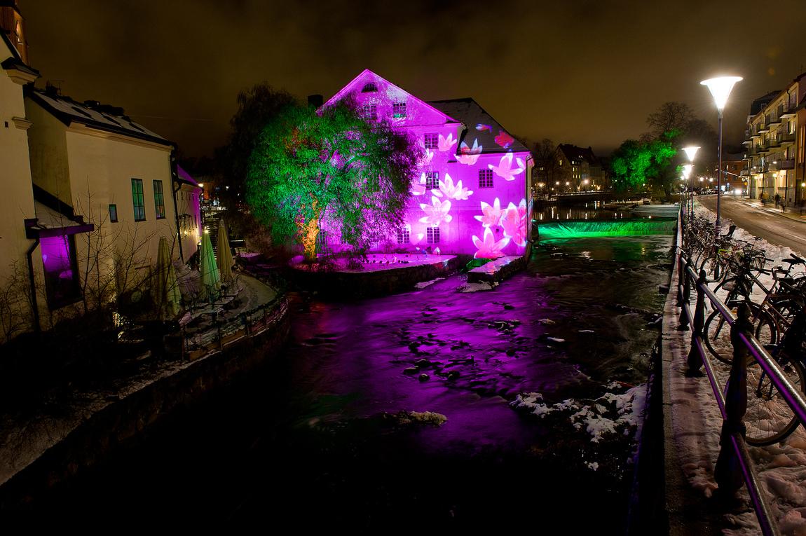 Dan Pettersson - Allt Ljus på Uppsala