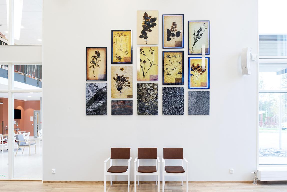 Erik Holmstedt - Herbarium