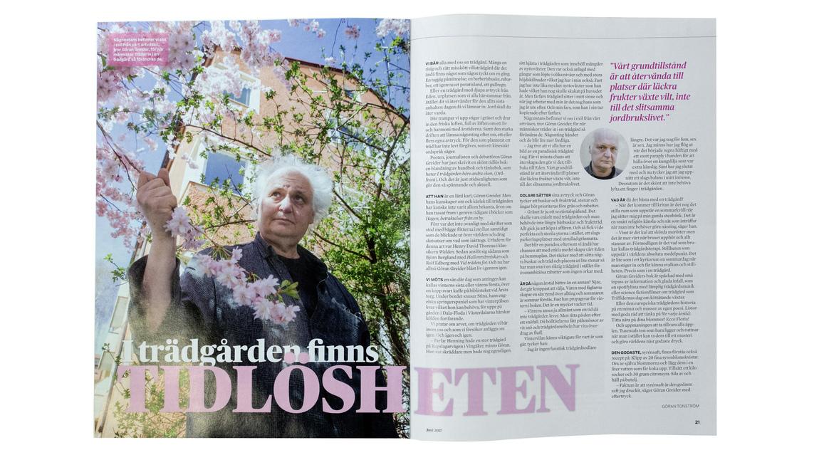 Johanna Norin - In print --- I tryck