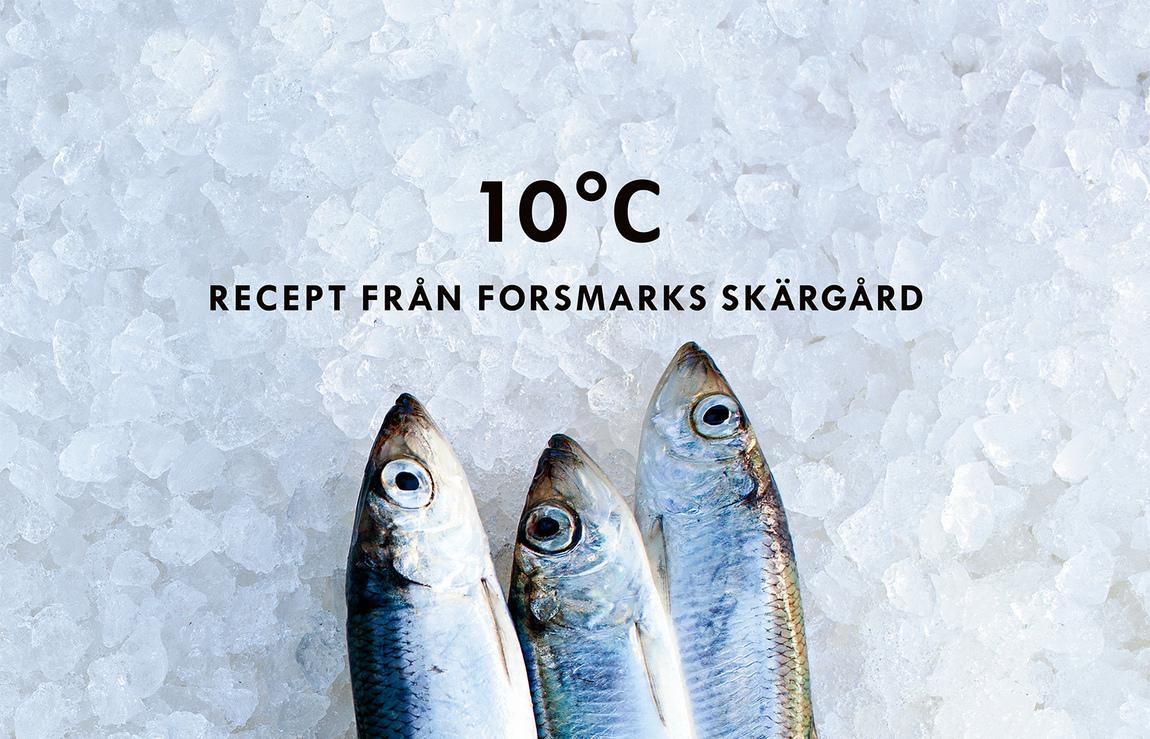 Carl Johan Erikson - 10°C : Recept från Forsmarks skärgård