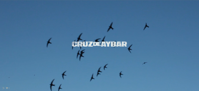 Cruz De Aybar on Find Creatives
