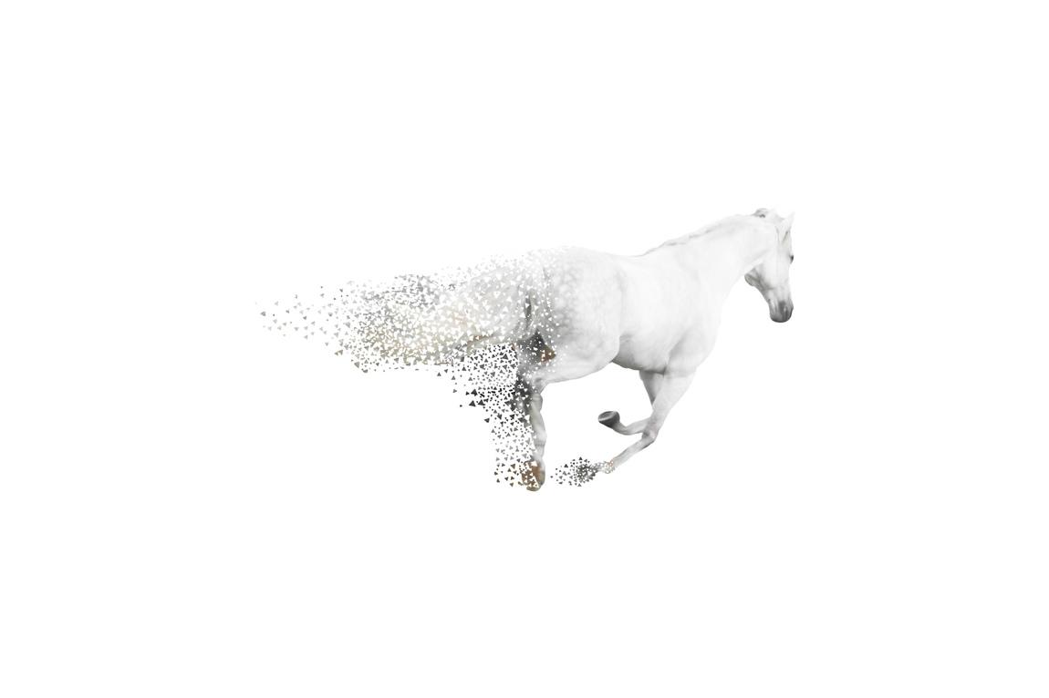 Johanna Nolsa - Upplösta känslor, fotomontage ur utställningen