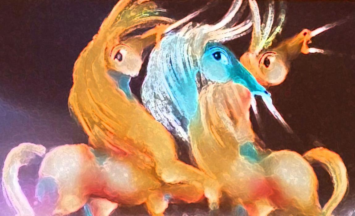 David Berkowitz Chicago - Colorful Rhapsody